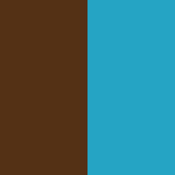 Chocolat / Light Turquoise - CH/LTQ