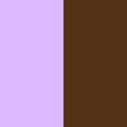 Senteur / Chocolat - ST/CH