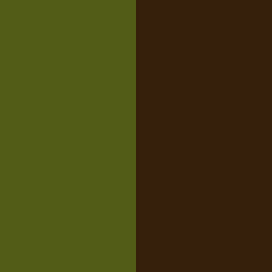 Kaki/Chocolat - KA/CH