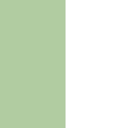 Pomme/blanc - PO/BL