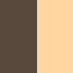 CHOCOLAT/BEIGE - CHBE